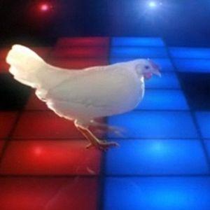 """Junkfood Inc. Set LVI """"Twenty twelve Disco chicken"""""""