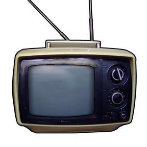 FANTA TV - Puntata 8 con Wilma De Angelis (25/01/2013)