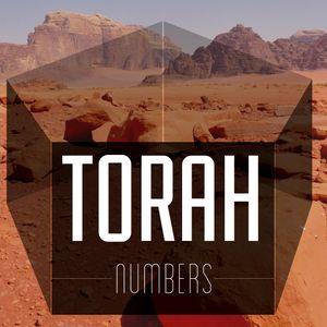 Torah, Pt. 29 | Serpents and Salvation (Audio)