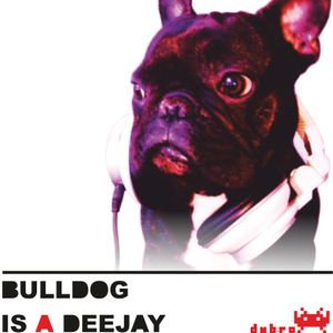 Bulldog Is A DeeJay