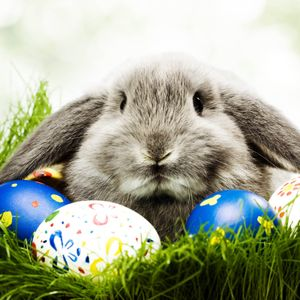 Easter chillout mix 2015