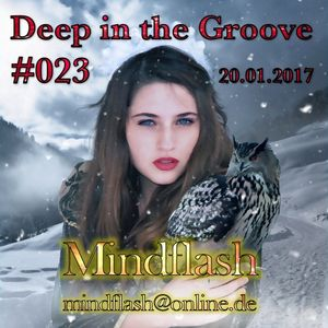 Deep in the Groove 023 (20.01.17)