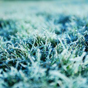 Warmcast#2 - Winter Songs