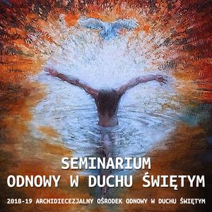 SOwDŚ - Konferencja 08 - ks. Adam Sczaniecki - Duch Święty będzie mówił przez was - 2019.02.13