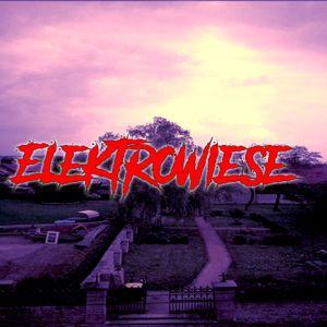 Elektrowiese Vol. 6 (Evil Edition)