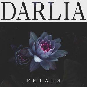 An Interview with Darlia
