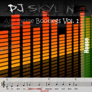 Alle Meine Bootlegs Vol. 1 - Mixed by DJ Skyline