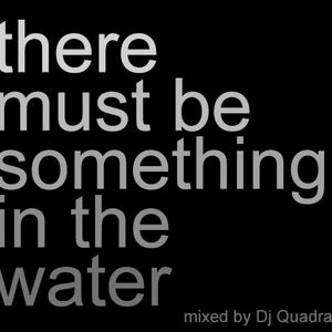 Something in the Water Vol. 1 2011