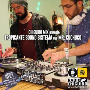 Chiguiro Mix presents: Bacile Analogo, mixed by Tropicante Sound Sistema b2b Mr. Cuchuco