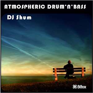 DJ Shum - atmospheric drum'n'bass