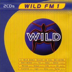 WILD FM VOLUME 1 - THE WILD MEGAMIX (DIEGO V)