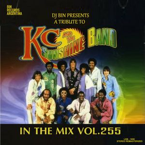 Dj Bin - In The Mix Vol.255
