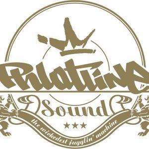 Phlatline Sound - Real Rude Boys 2010