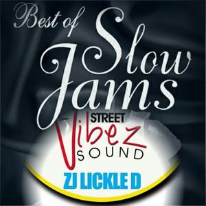 LICKLE.D. PRESENTS THE BEST OF SLOW JAMZ