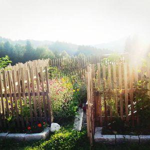 Scheibosan - Gomde 2014 - pt 1 - Big Chill on sunday