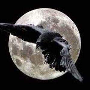 LucartMp-set Crow
