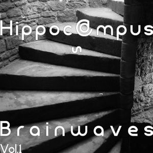 Hippocampus~ Brainwaves