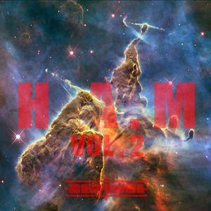 H.A.M Vol. 2