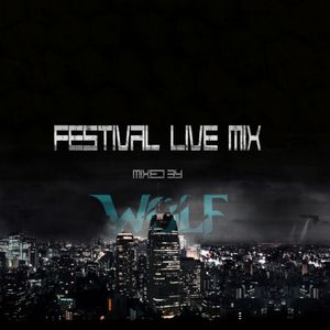 Festival Live Mix W Radio Vol.1