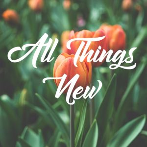04.16.17 A New Birth  / All Things New, 3 - EASTER : Jerry Kaping