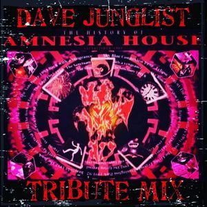 The History Of Amnesia House Tribute Mix