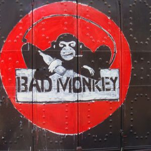 Bad Monkey - Feel