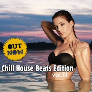 VA_-_Chill_House_Beats_Edition_Vol.3 (mixed by Luchian Cris).mp3