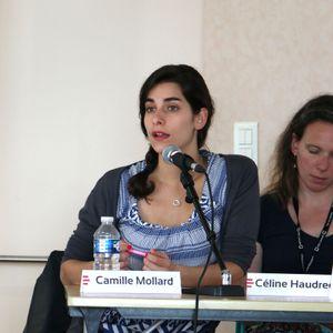 2nd Forum 2/7 : Questions publics - Journée pro « Mécénat culturel et financement participatif »