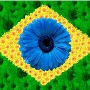 Samba do Brasil - Vol. 02