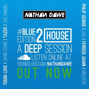 HOUSE PART 2 #BLUEedition2 | @NATHANDAWE