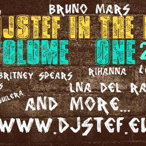 DjStef In The Mix Vol.1-2013