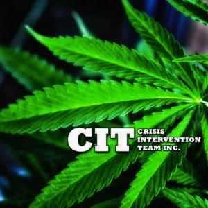 Marijuana, Cannabis, Hash and more...