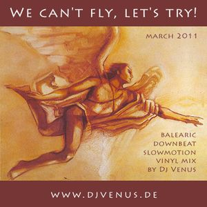 We Can't Fly, Let's Try (2011-03-09)