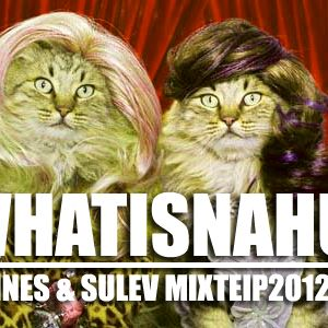 Hannes & Sulev - WINMIX2012!!!!