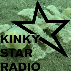 KINKY STAR RADIO // 04-09-2018 //