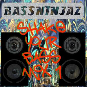 BassNinjaz - Shake Your Bass Mix 1