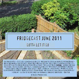 FridgeCast June 2011 #1