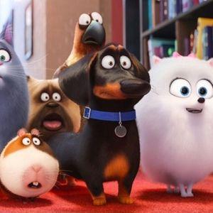Cinenfermos 20 de Julio Tarzan La vida Secreta de tus Mascotas