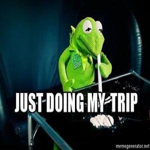 Froggy Trip