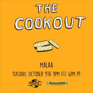 The Cookout 120: Malaa