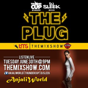 The Plug 06/30/2015 (Anjali World)