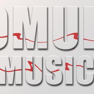 DJ Zlo - Mixed Flavors (Techno Mode Set)-Mar 24, 2012