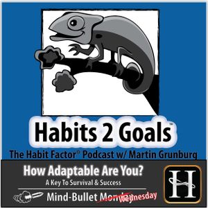 S02-Mind Bullet Wed 20:  How Adaptable Are You?