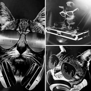Kenko Da Tech House Kat (High On Katnip Mix) #002
