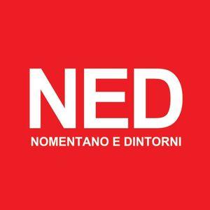 RADIO NED 2015 #1, un programma di Pier Paolo Mocci con Maura Cenciarelli