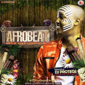 Dj Protege - PVE Vol 33 Afro Beat
