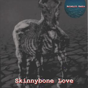 Skinnibone Love @ Molehill Radio vol.1