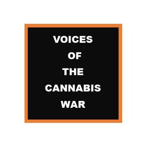 Voices of the War~Raids, Legal Violence Against Average Citizens