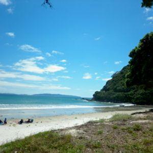 Kiwi SummerStep vol2