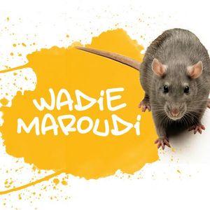 Wadie Maroudi - Old School House Mix
